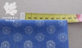 blaueblusen-auschnitt