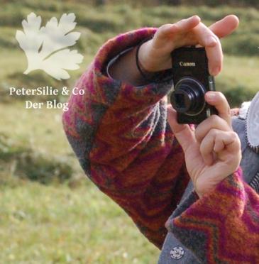 fototips für den Nähblog