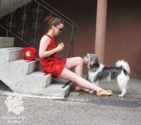 Pramo 5/1968 A-Linien Kleid, 60s dress, Vintage nähen blog, Shweshwe Stoff von Karlotta Pink