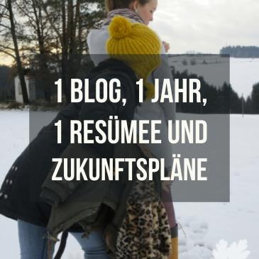 Resümee 1 Jahr Blog