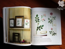 The Embroidered Garden Kazuko Aoki Roost Books
