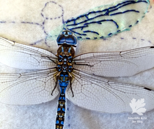 Libelle Hangestickt Stickerei Organza Perlen Filz Tutorial